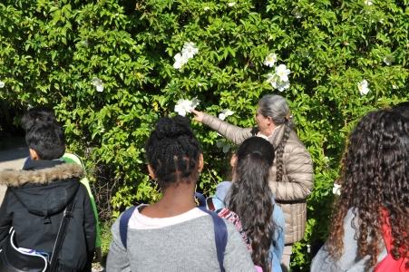 11ème édition de la journée des collèges au jardin Thuret