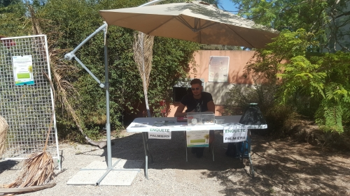 Stand palmiers INRAE Jardin Thuret 2020