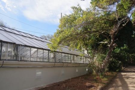 Le jardin botanique de la villa thuret d 39 antibes travaux for Jardin villa thuret