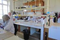 atelier restauration herbier Villa Thuret