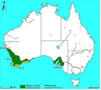 Carte de répartition d'Isopogon formosus en Australie