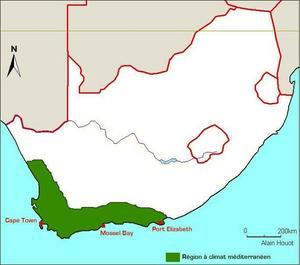 L'Afrique du sud méditerranéenne