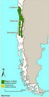 Carte de répartition de Jubaea chilensis au Chili