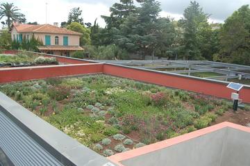 Aspect général expérimentation toitures végétales