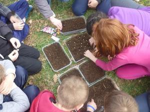 Jardinage Semis Antibes 2